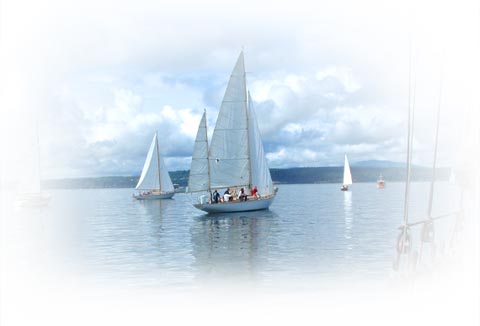 Hands on Sail training takes students to Research Sites in the San Juan Islands
